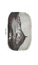Sida 139