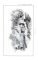 Sidan 248