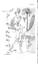 Sida 362