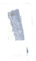 Sidan 340
