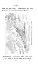 Sida 313