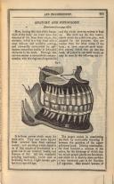Sidan 241