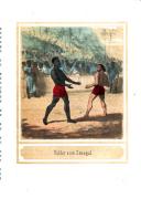 Sidan 242