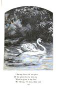 Sidan 533
