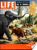 19 okt 1953