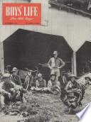 nov 1946