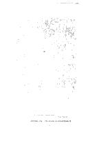 Sida 386