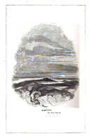 Sida 516