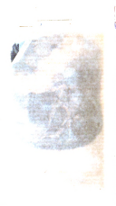 Sida 550