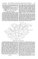 Sidan 567