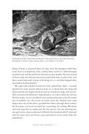 Sidan 7