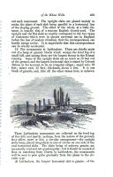 Sidan 491