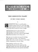 Sidan 99
