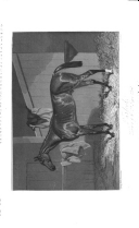 Sida 320