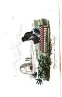 Sidan 210