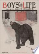 maj 1919