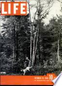 29 okt 1945