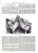 Sidan 121