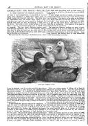 Sidan 168