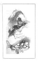 Sida 89