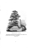 Sida 278