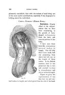 Sidan 180